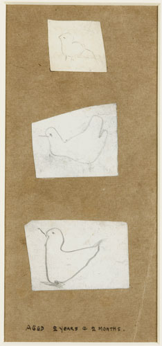 First drawing: three small sketches of birds